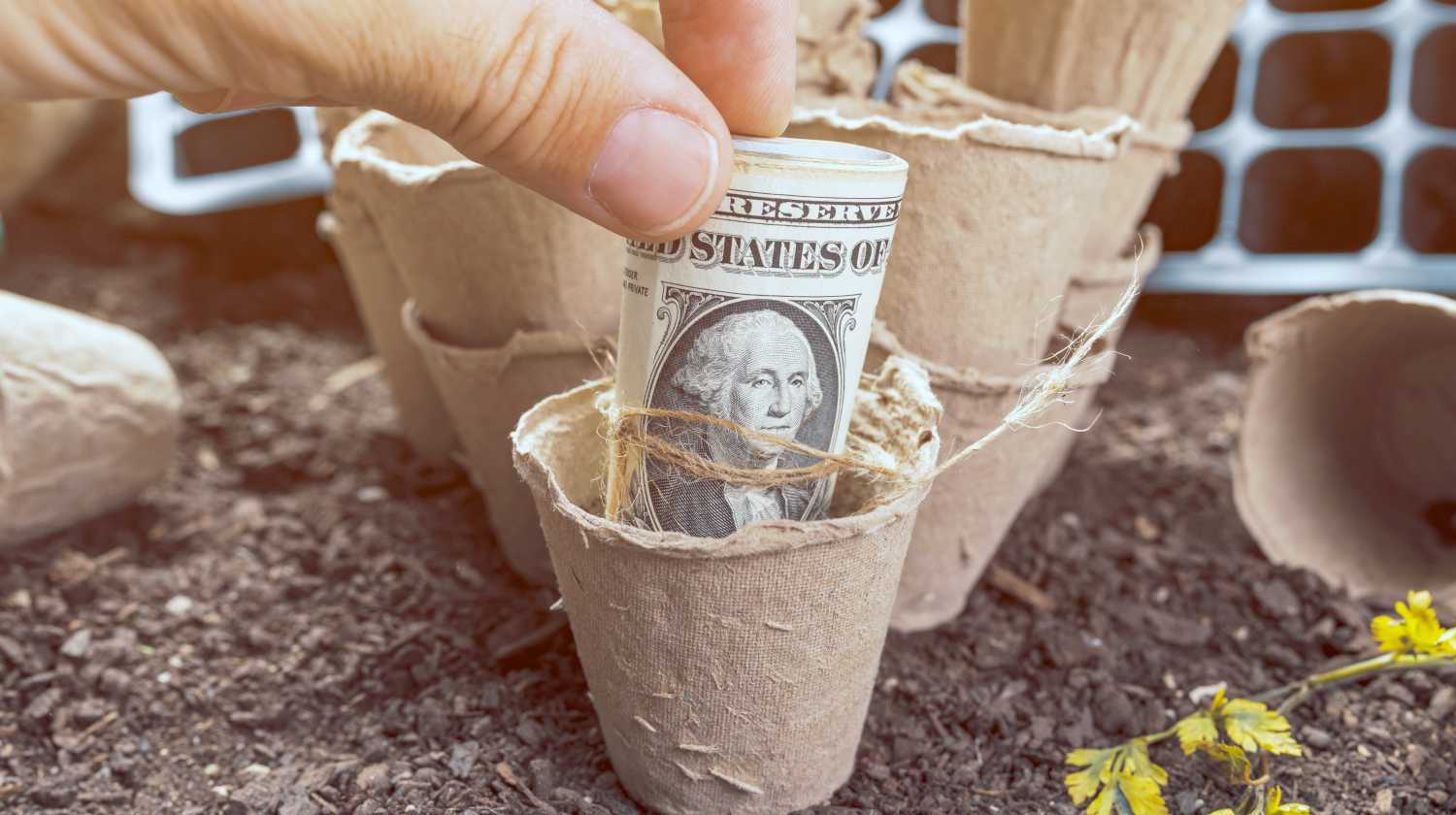 Feature | peat pot soil containers | Business vs Hobby: How The IRS Qualifies Hobby Income As A Business | hobby expenses